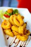 Crispy calamari zdjęcie royalty free