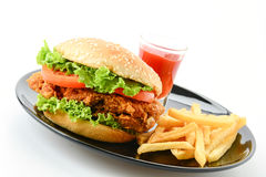 Crispy chicken burger. On white background Stock Images