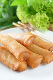 Crispy Chinese Traditional Spring rolls food Stock Images