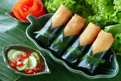 Crispy Chinese Traditional Spring rolls food. On dish royalty free stock photos
