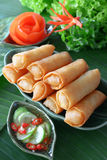 Crispy Chinese Traditional Spring rolls food. On dish royalty free stock photo