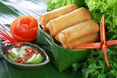 Crispy Chinese Traditional Spring rolls food. On set royalty free stock photo