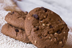 Chocolate cookie Stock Photography