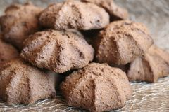 Chocolate shortbread cookie. delicious shortbread cookies with cocoa. Crispy chocolate shortbread cookie. delicious shortbread cookies with cocoa Royalty Free Stock Photography