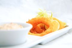 crispy cirkeltioarmad bläckfisk Arkivfoto