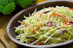 Crispy Coleslaw. A bowl of crispy coleslaw Royalty Free Stock Photo