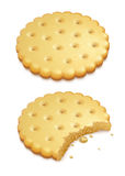 Crispy cookies  on white. Two crispy cookies  on white background - eps10 vector illustration Royalty Free Stock Photography