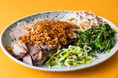 Crispy duck with nut, noodle and herb. Crispy duck sprinkled with roasted nut, glass noodles and many fragrant green herb leaves on plate on orange background stock image