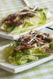 Crispy duck salad Royalty Free Stock Photography
