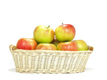 Elstar variety apples Stock Photos