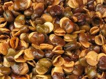 Crispy fried beans Stock Photos