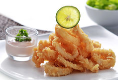 Crispy fried calamary. Close up portrait of crispy fried calamary served with a cocktail sauce Royalty Free Stock Photography