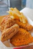 Crispy głębocy pieczonego kurczaka i francuza dłoniaki obraz stock