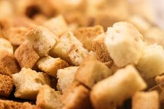 Crispy golden freshly sauteed croutons stock photo
