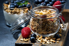 Crispy muesli and fresh berries for breakfast, closeup Royalty Free Stock Images