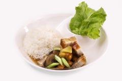 Crispy płatowaci wieprzowina ryż Obrazy Royalty Free
