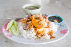 Crispy pork med rice Royaltyfri Bild