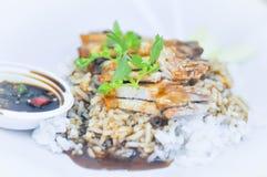 Crispy pork with rice Royalty Free Stock Photos