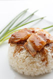 Crispy pork with rice on white background. Crispy pork with rice and vegetable on white background Royalty Free Stock Photo