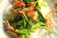 Crispy pork Stir-fried Royalty Free Stock Image