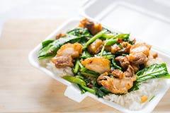 Crispy pork Stir-fried kale with steamed rice in Styrofoam food Stock Photos