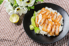 Crispy roasted belly pork chinese style and rice Royalty Free Stock Images