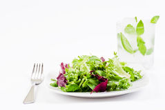 Crispy Salad And Ice Cold Drink Royalty Free Stock Photography