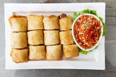 Crispy spring roll on white plate Stock Image