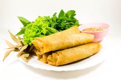 Crispy spring rolls. On dish with vegetable Royalty Free Stock Image