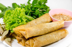 Crispy spring rolls Royalty Free Stock Images
