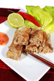 Crispy springrolls on dish with salad. Vietnamese food on the dish Stock Photography