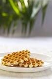 Crispy waffles Stock Photography