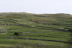 Criss cross walls across the countryside Royalty Free Stock Images