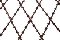 Criss crossed barbed wire. Isolated close up of criss-crossed barbed wire fence Stock Images