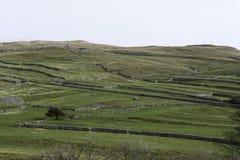 Criss-Kreuzwände über der Landschaft Lizenzfreie Stockbilder