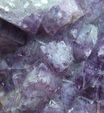 Cristais cúbicos roxos da fluorite em um grupo fotos de stock