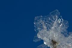 Cristais de gelo e o céu azul Imagem de Stock