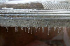 Cristais de gelo no inverno Imagens de Stock Royalty Free