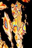 Cristais do ácido cítrico Imagem de Stock