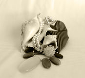 cristal кольцо perls Стоковое Изображение RF