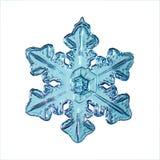Cristal azul do floco de neve ilustração royalty free