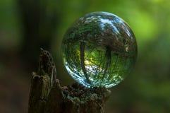 Cristal bollreflexion arkivbild