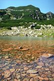 Cristal clear water lake. Small mountain lake in Retezat National Park stock images