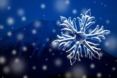 Cristal da neve Imagens de Stock