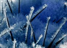 Cristal de glace bizzar Photos libres de droits