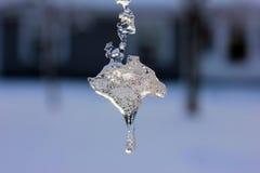 Cristal de glace en détail Images stock