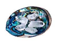 Cristal de quartzo no shell de ostra Imagens de Stock