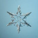 Cristal do floco de neve natural Imagens de Stock