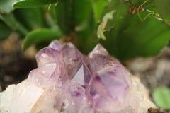 Cristales Amethyst Imagen de archivo