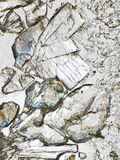 Cristales bajo el microscopio Imágenes de archivo libres de regalías